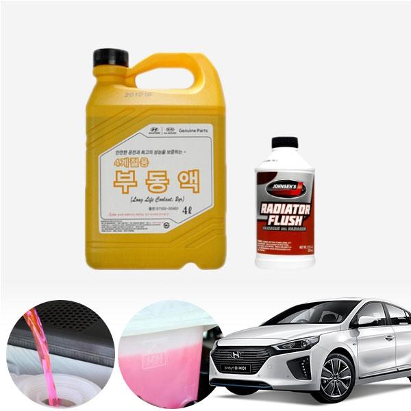 아이오닉 (가솔린) 순정부동액 플러싱 세트 cs01061
